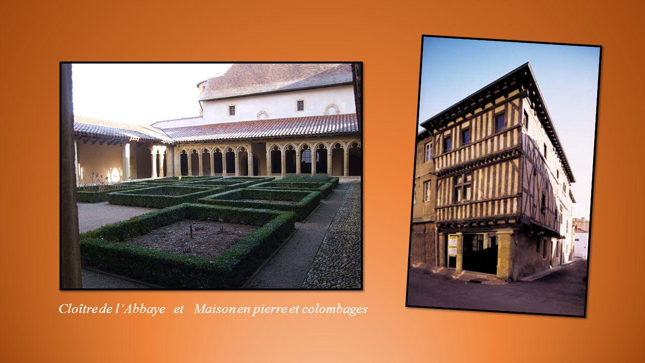 Cloître de l'Abbaye et Maison en pierre et colombages