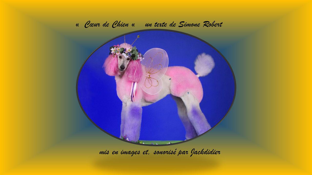 « Cœur de Chien « un texte de Simone Robert