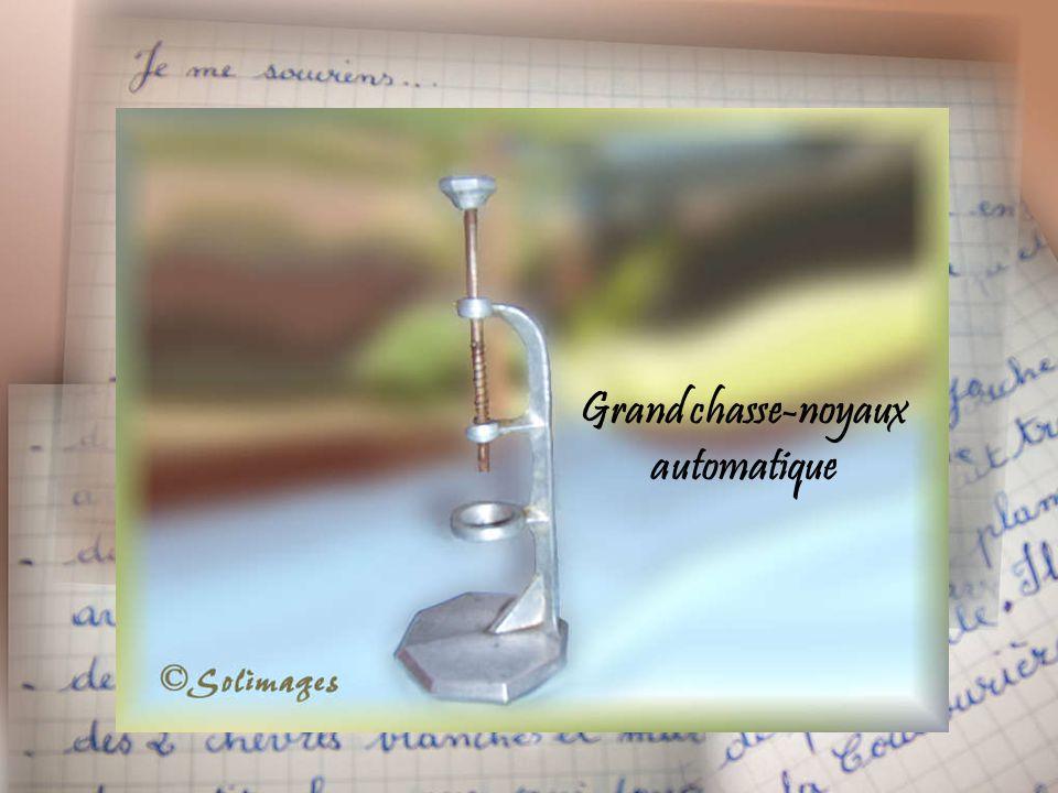 Grand chasse-noyaux automatique
