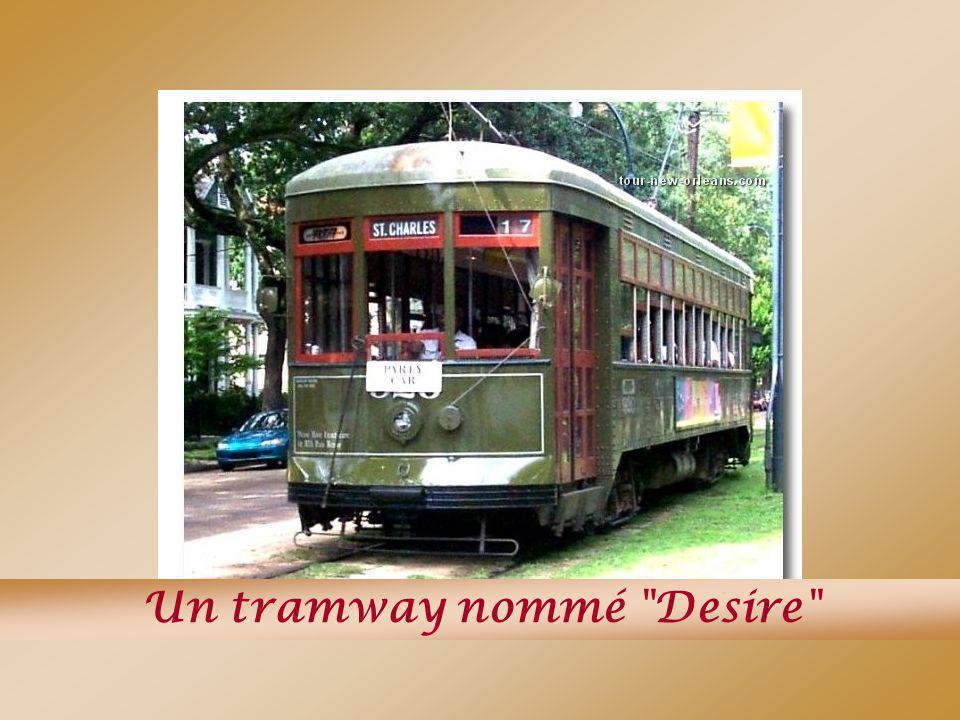 Un tramway nommé Desire