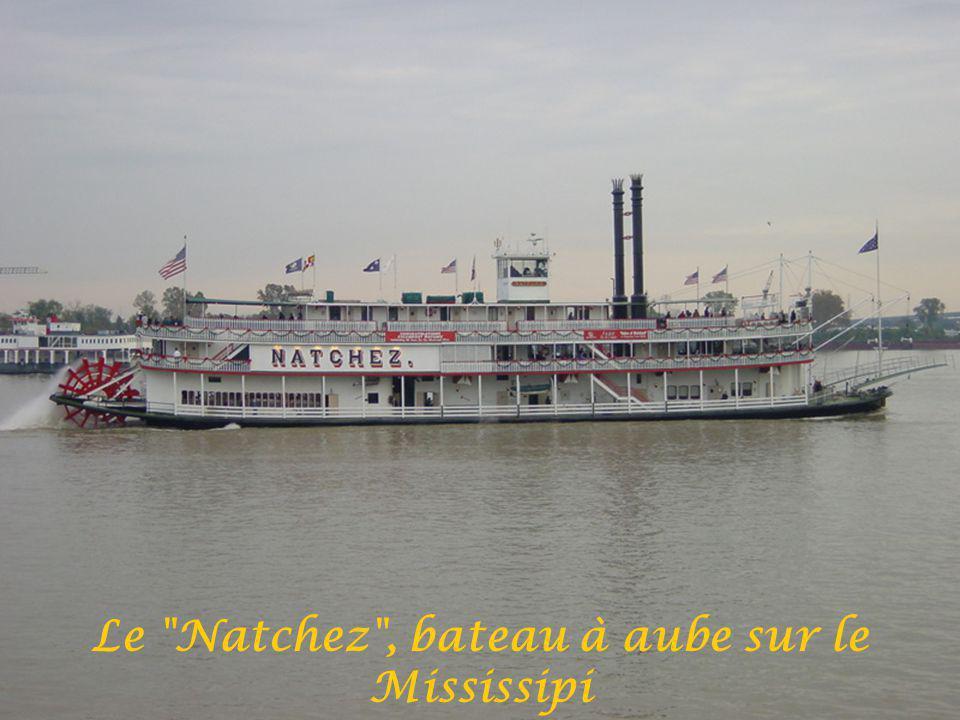 Le Natchez , bateau à aube sur le Mississipi