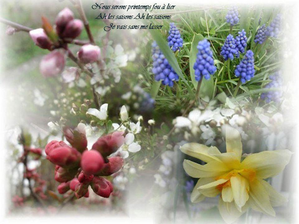 Nous serons printemps fou à lier Ah les saisons Ah les saisons