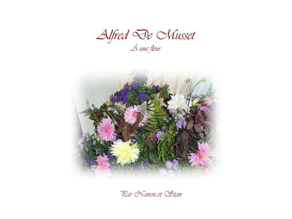 Alfred De Musset À une fleur Par Nanou et Stan