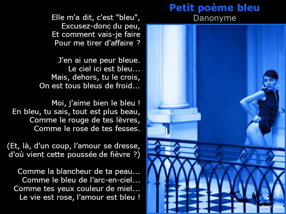 Petit poème bleu Danonyme