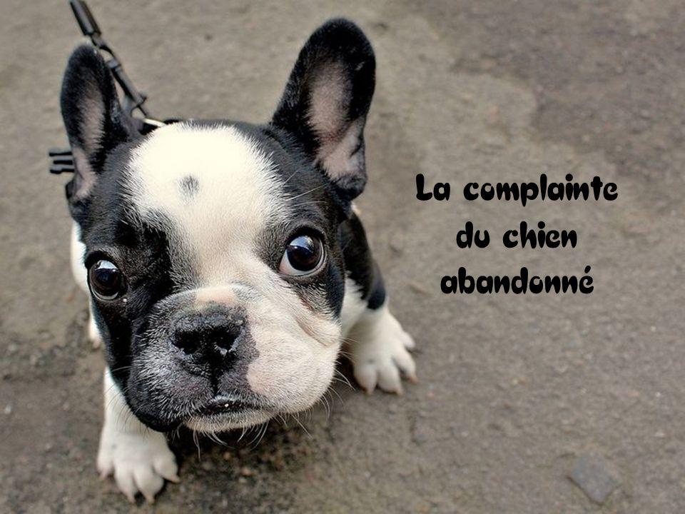 La complainte du chien abandonné