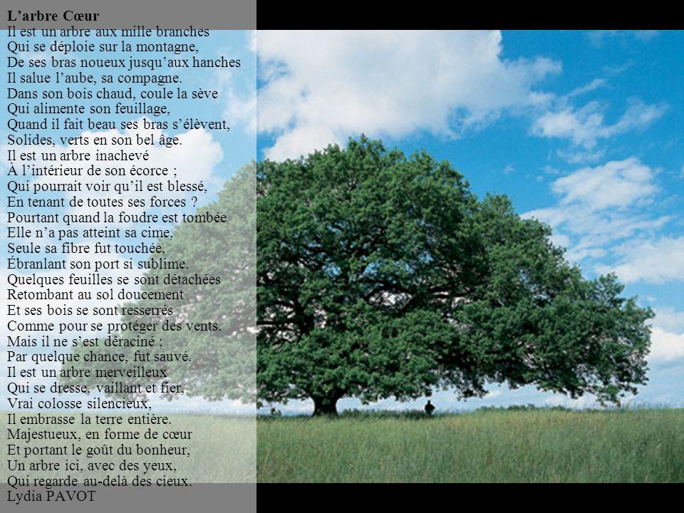 L'arbre Cœur Il est un arbre aux mille branches Qui se déploie sur la montagne, De ses bras noueux jusqu'aux hanches Il salue l'aube, sa compagne.