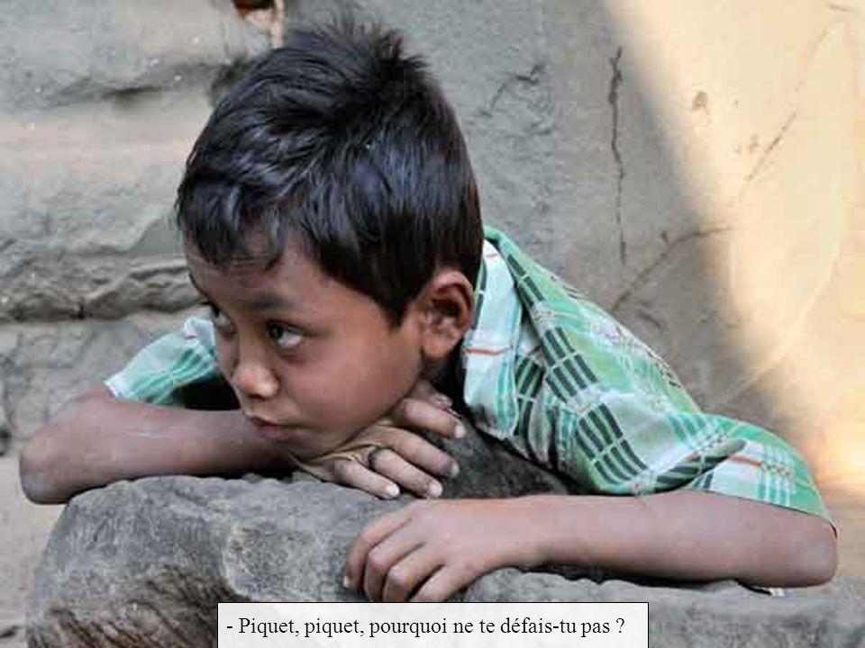 - Piquet, piquet, pourquoi ne te défais-tu pas