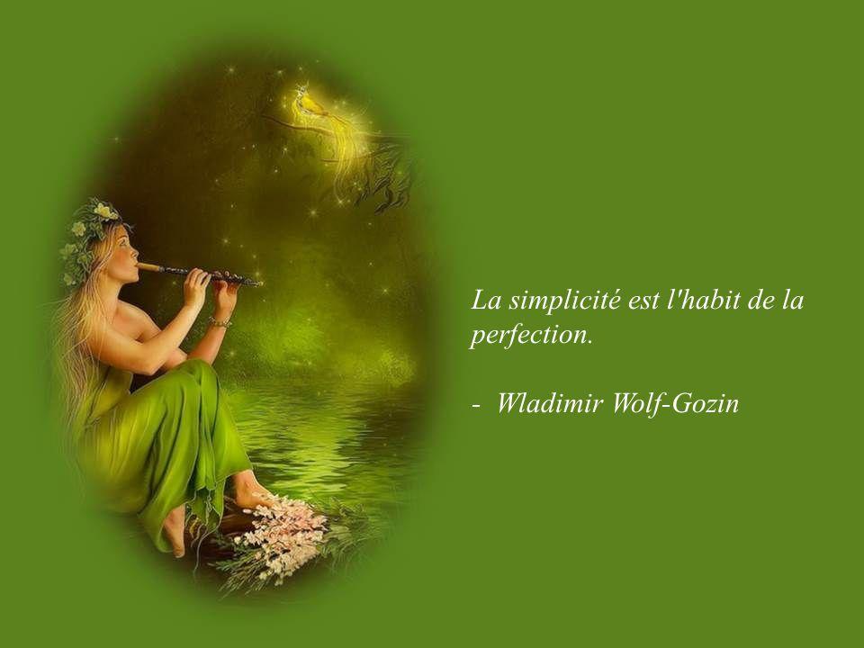 La simplicité est l habit de la perfection.