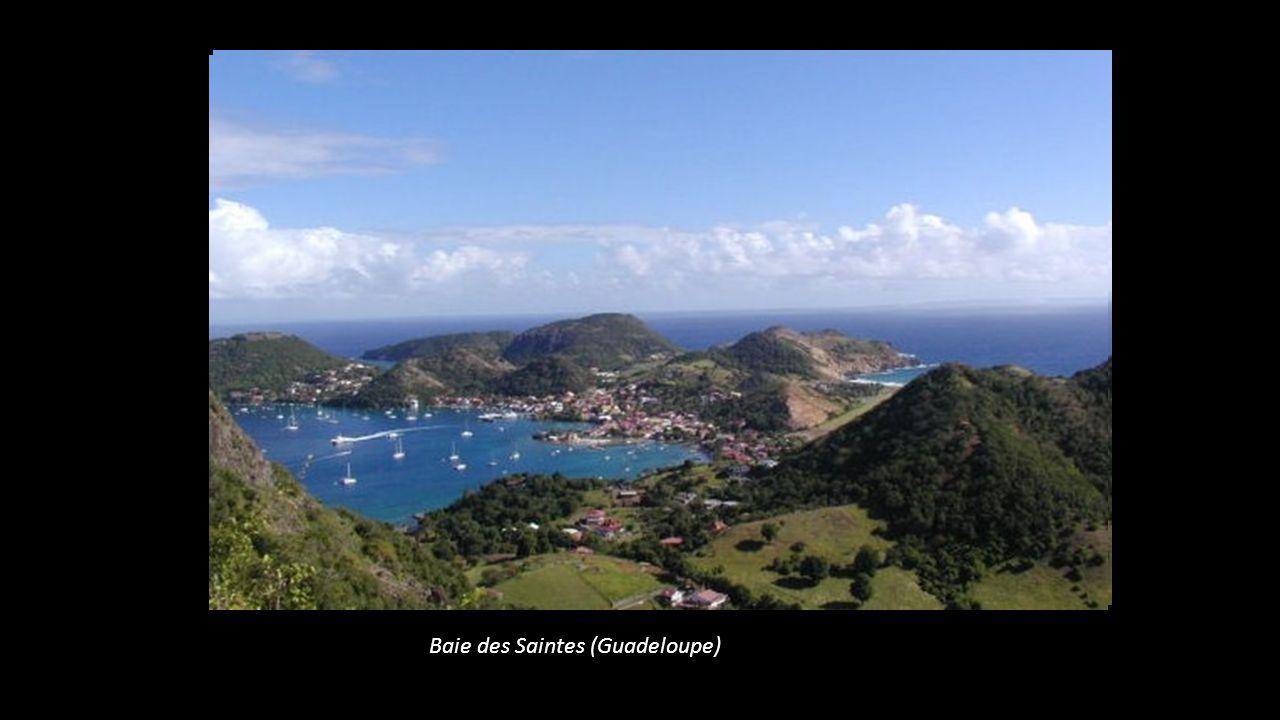 Baie des Saintes (Guadeloupe)