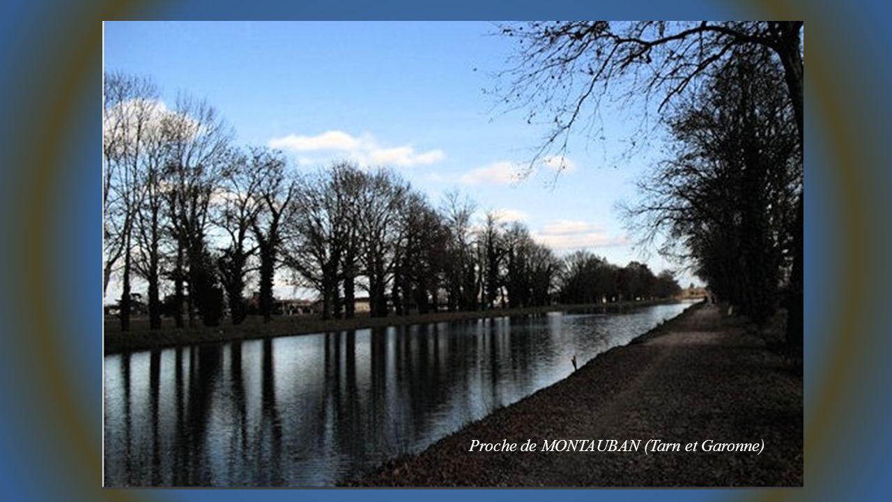 Proche de MONTAUBAN (Tarn et Garonne)