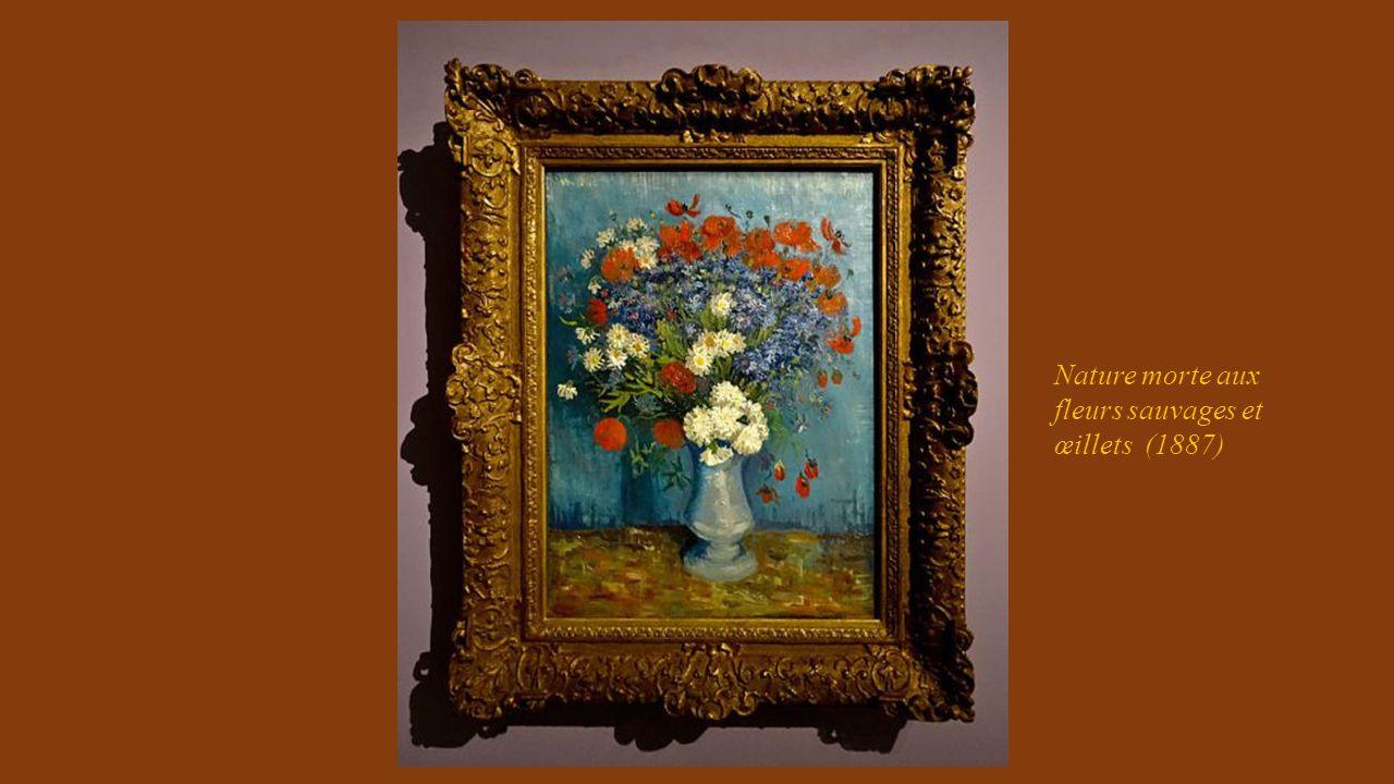 Nature morte aux fleurs sauvages et œillets (1887)