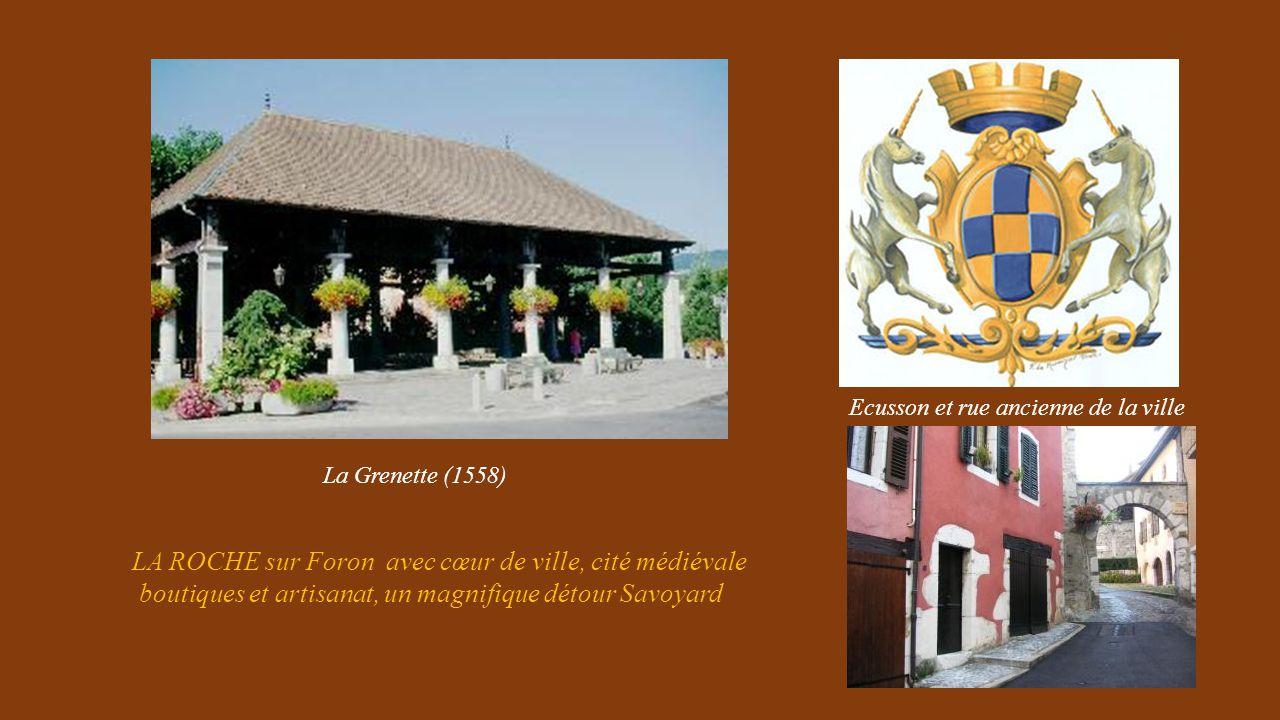 LA ROCHE sur Foron avec cœur de ville, cité médiévale