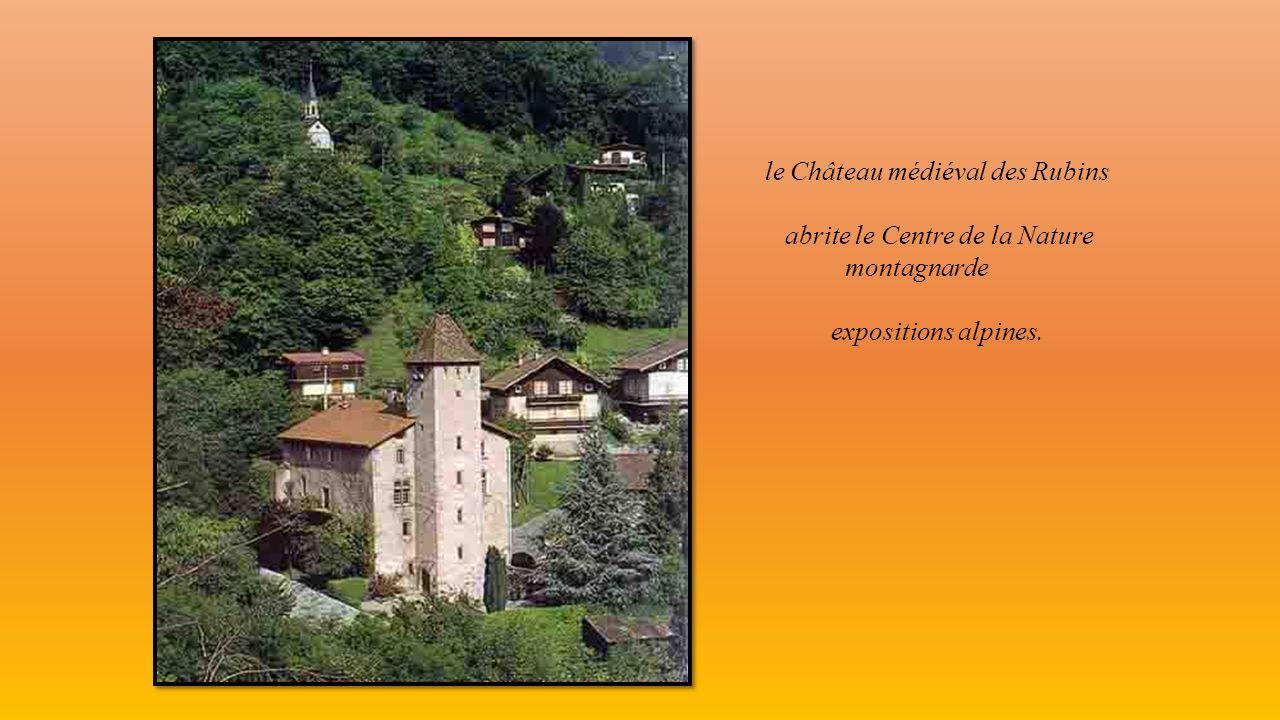 le Château médiéval des Rubins