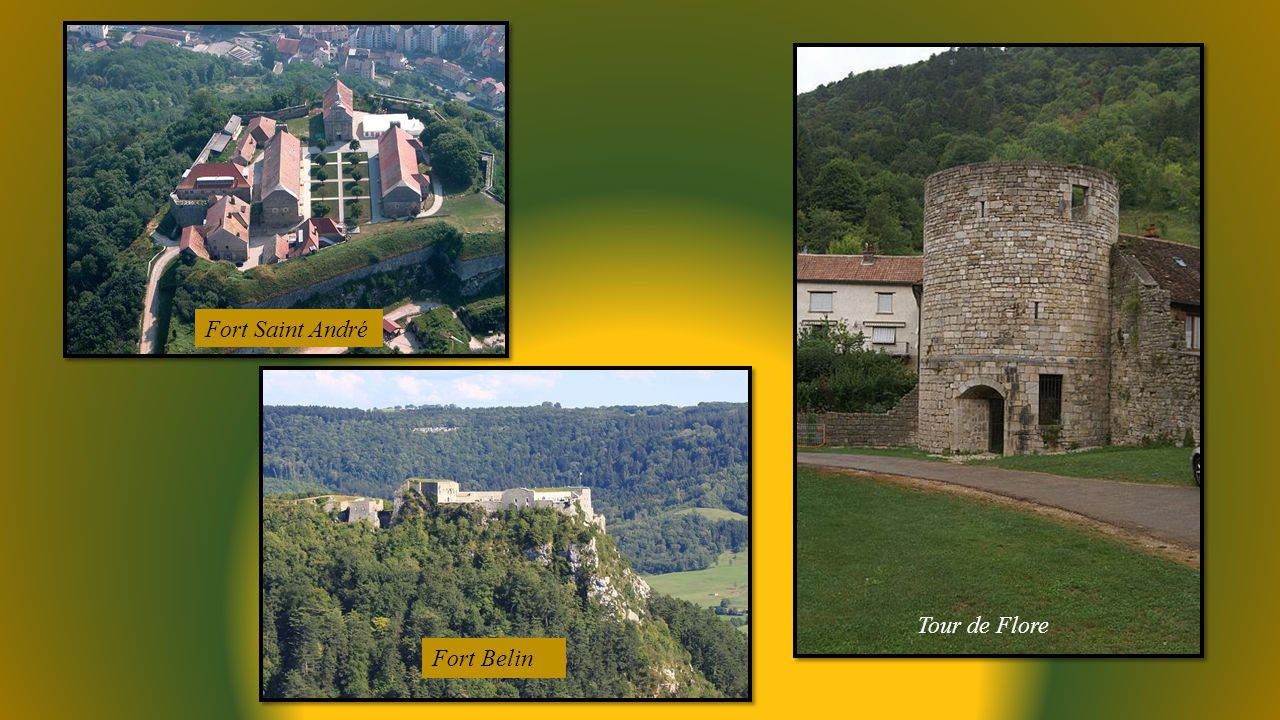 Fort Saint André Tour de Flore Fort Belin
