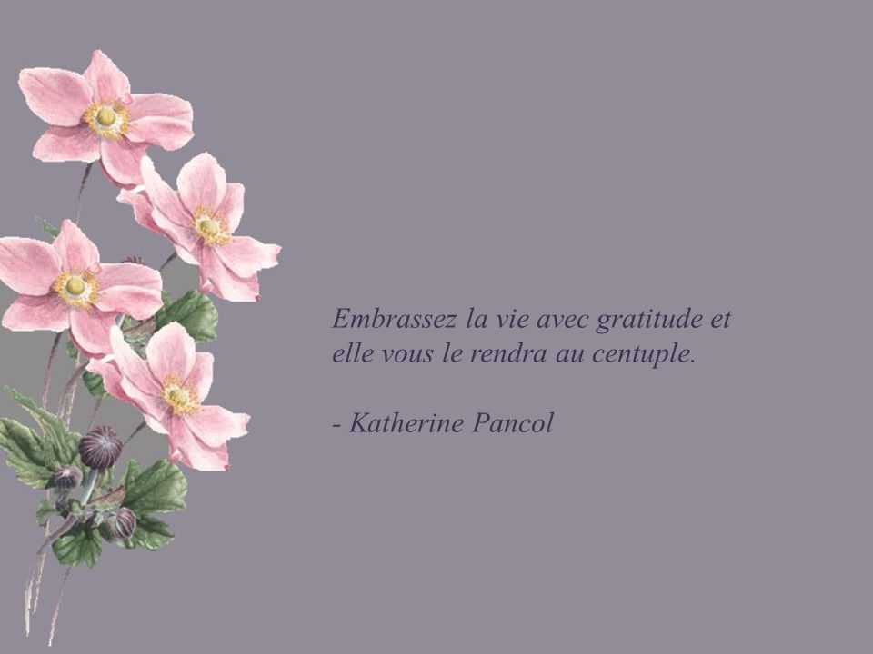 Embrassez la vie avec gratitude et elle vous le rendra au centuple.