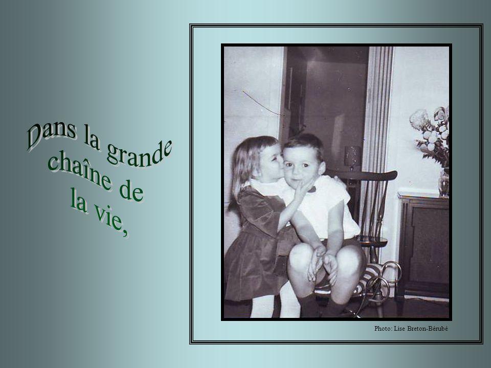 Dans la grande chaîne de la vie, Photo: Lise Breton-Bérubé