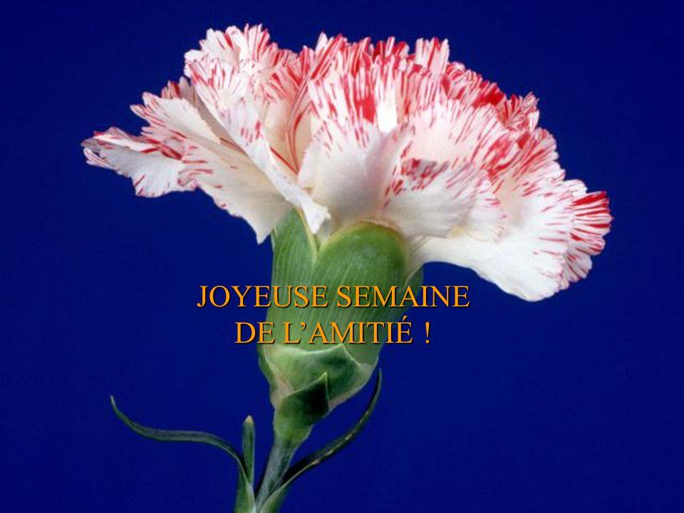 JOYEUSE SEMAINE DE L'AMITIÉ !