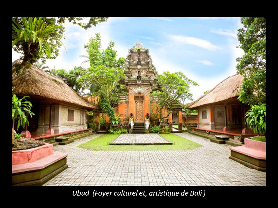 Ubud (Foyer culturel et, artistique de Bali )