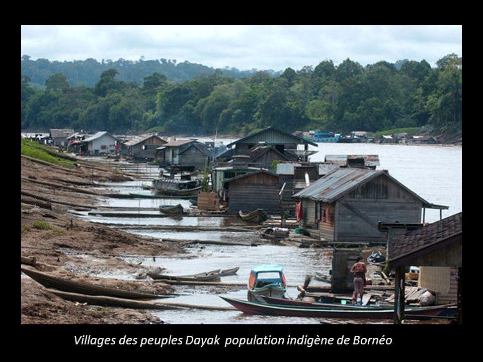 Villages des peuples Dayak population indigène de Bornéo