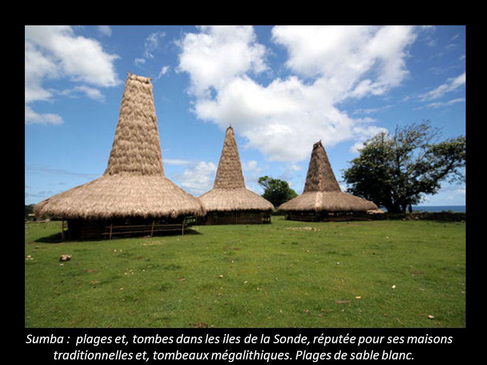 Sumba : plages et, tombes dans les iles de la Sonde, réputée pour ses maisons