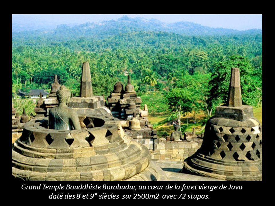 Grand Temple Bouddhiste Borobudur, au cœur de la foret vierge de Java
