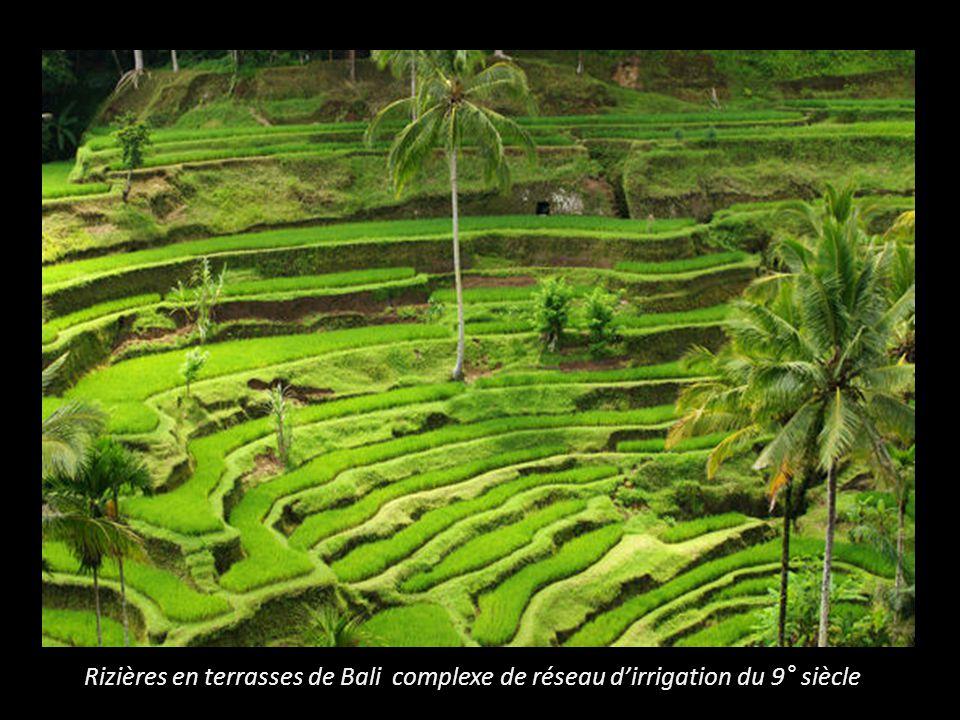 Rizières en terrasses de Bali complexe de réseau d'irrigation du 9° siècle