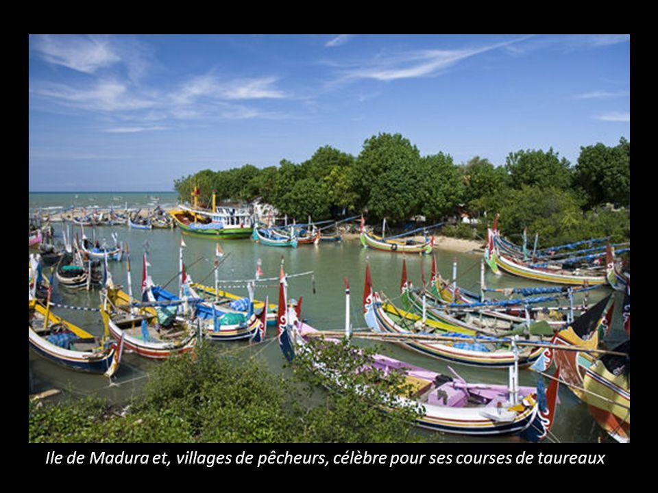 Ile de Madura et, villages de pêcheurs, célèbre pour ses courses de taureaux