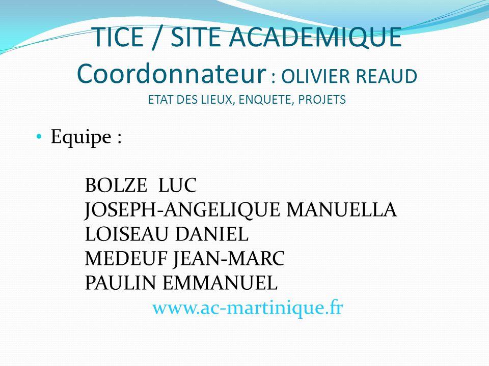 TICE / SITE ACADEMIQUE Coordonnateur : OLIVIER REAUD ETAT DES LIEUX, ENQUETE, PROJETS