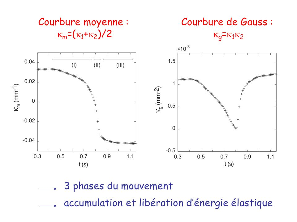 Courbure moyenne : km=(k1+k2)/2. Courbure de Gauss : kg=k1k2.