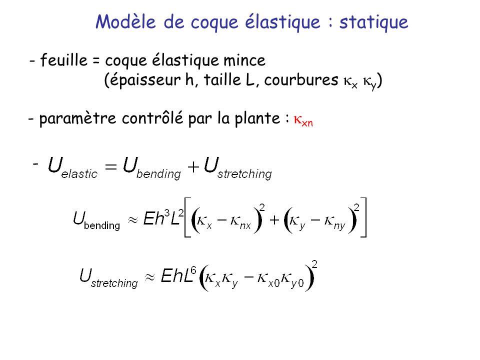 Modèle de coque élastique : statique