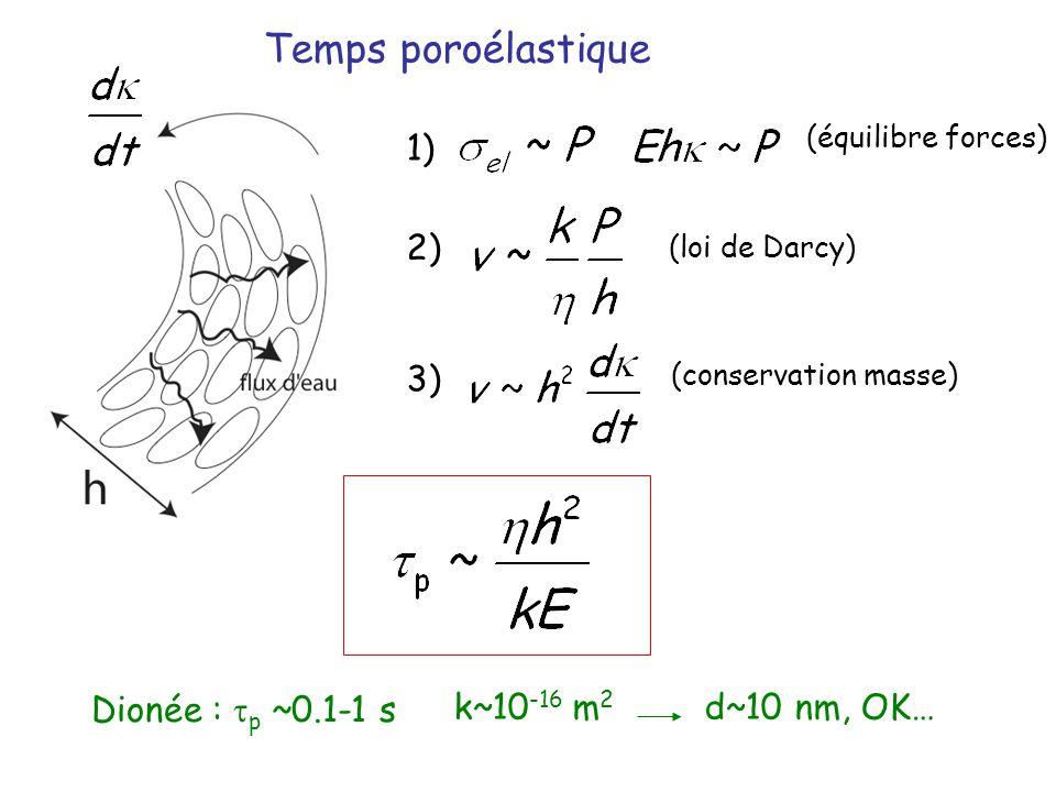 Temps poroélastique 1) 2) 3) Dionée : tp ~0.1-1 s