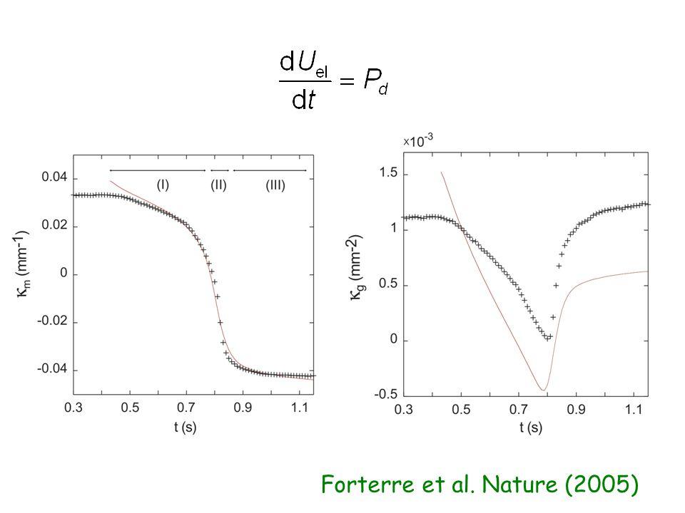 Forterre et al. Nature (2005)