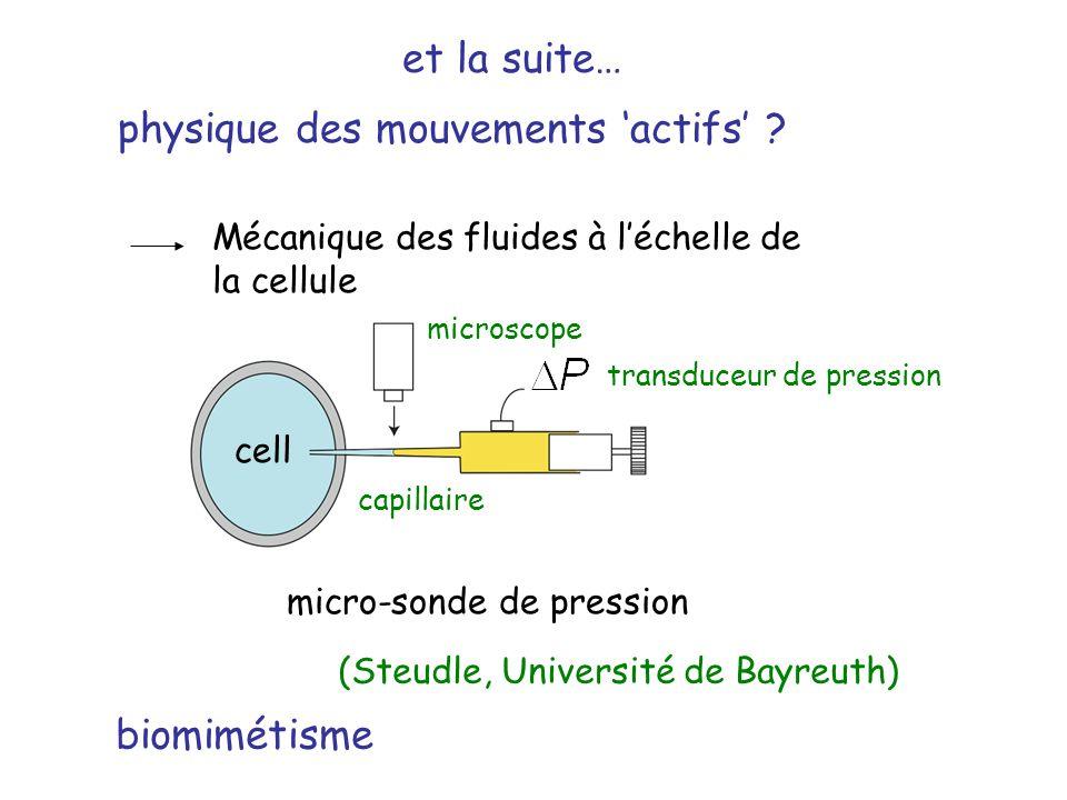 physique des mouvements 'actifs'
