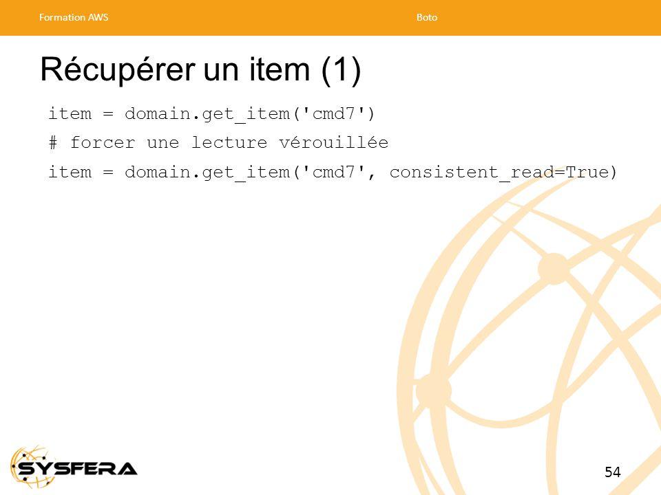 Récupérer un item (1) item = domain.get_item( cmd7 )
