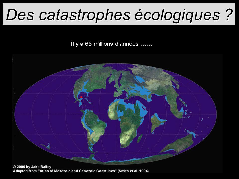Des catastrophes écologiques