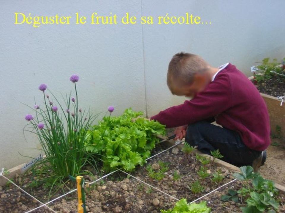 Le moment du goûter est l 'occasion de déguster les produits du jardin, récoltés et préparés par les élèves