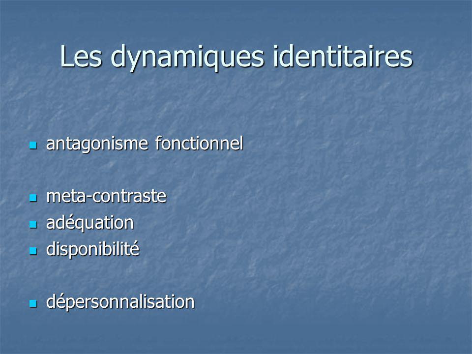 Les dynamiques identitaires