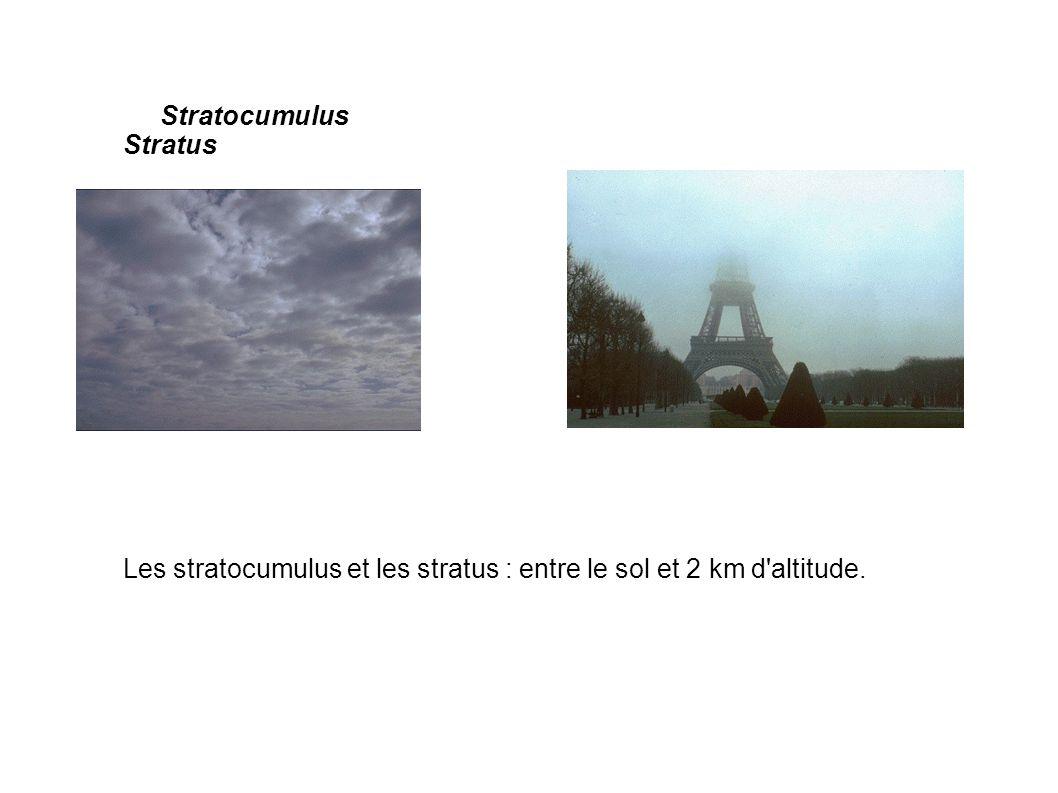 Stratocumulus Stratus
