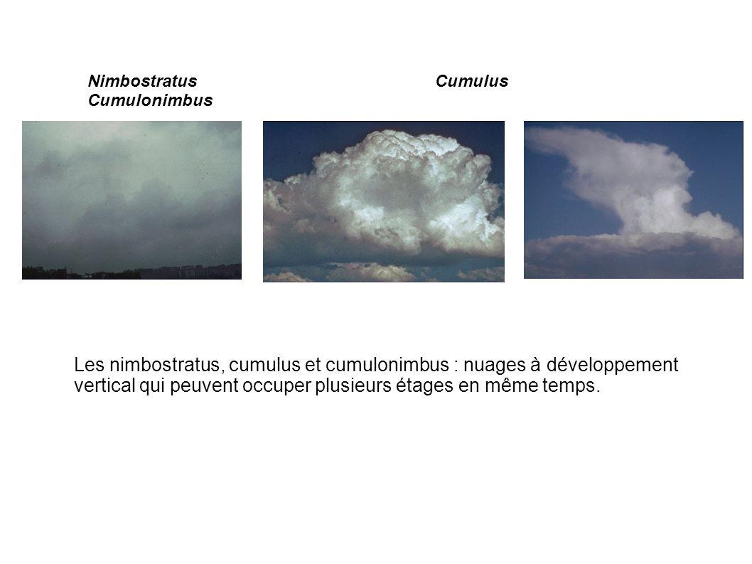 Nimbostratus Cumulus Cumulonimbus