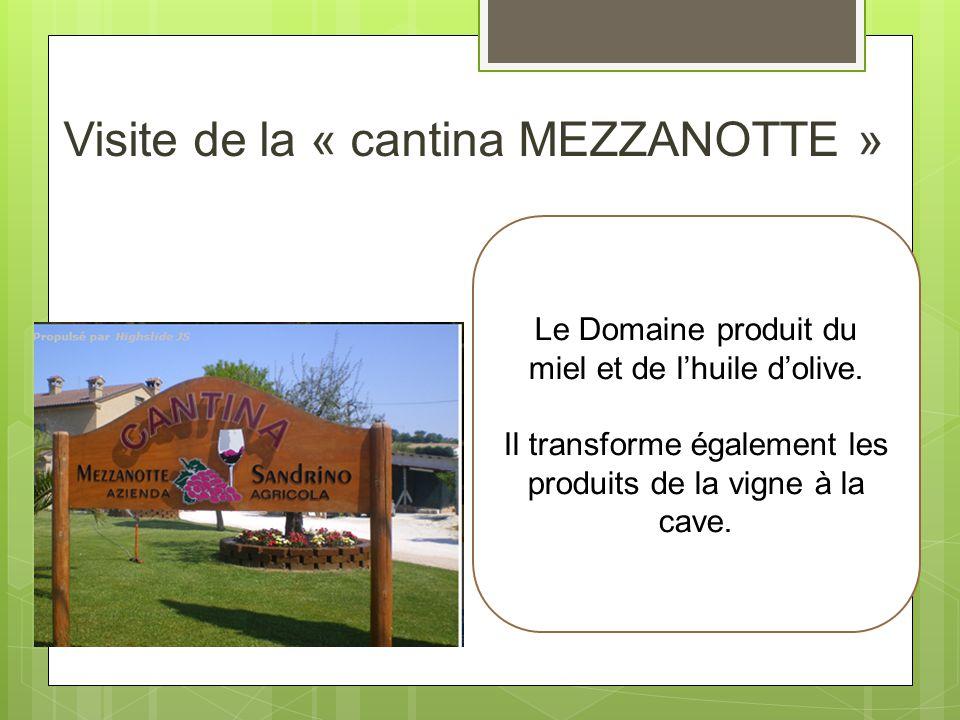 Visite de la « cantina MEZZANOTTE »