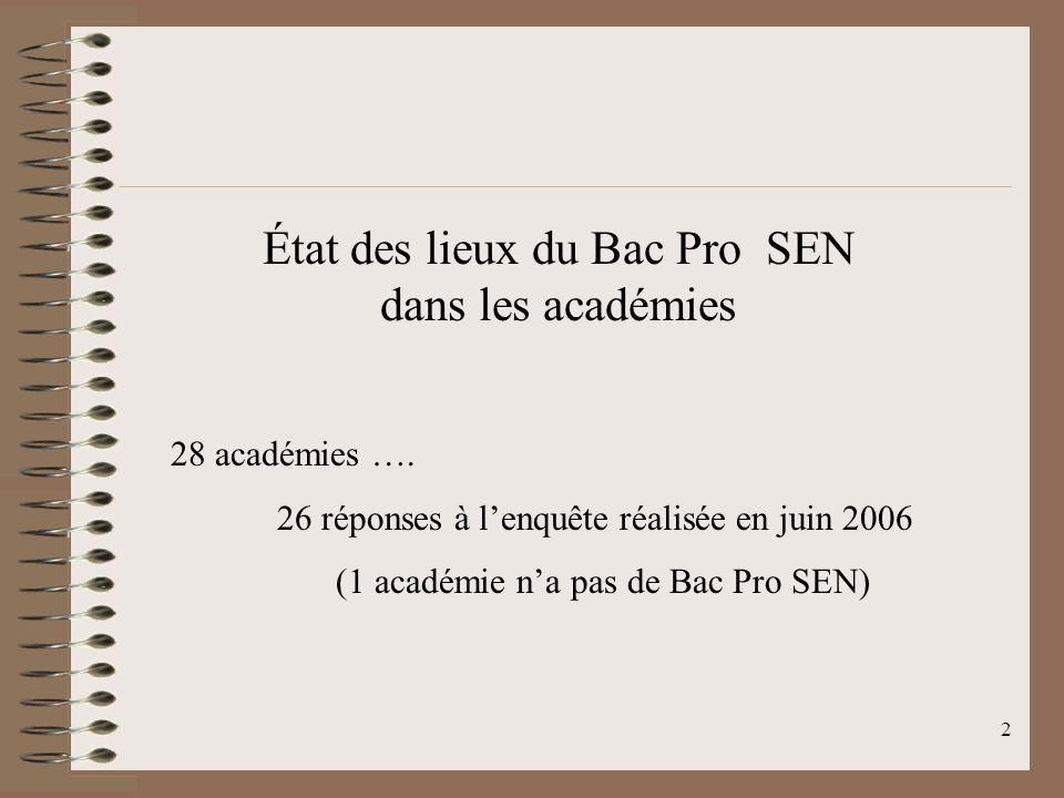 État des lieux du Bac Pro SEN dans les académies