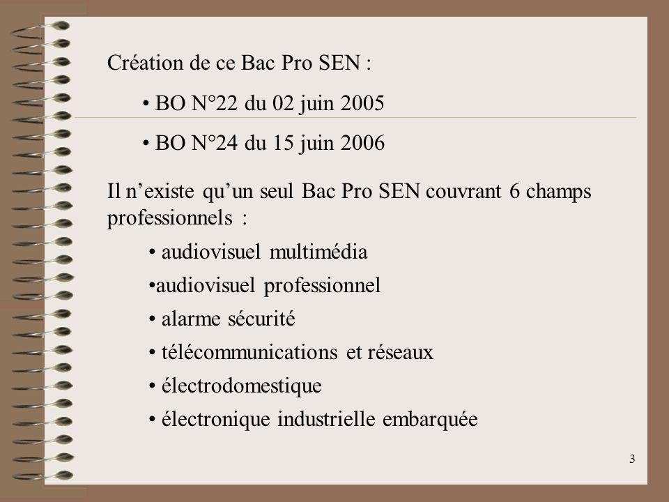 Création de ce Bac Pro SEN :
