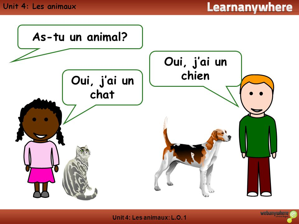 As-tu un animal Oui, j'ai un chien Oui, j'ai un chat