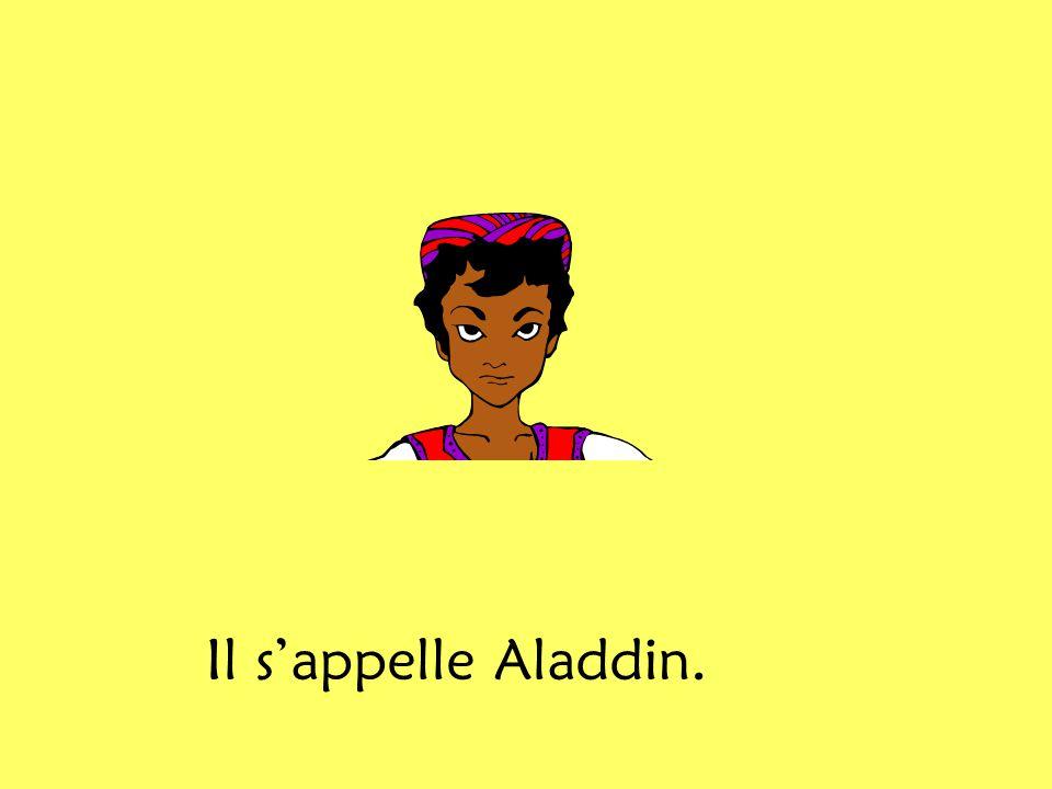 Il s'appelle Aladdin.