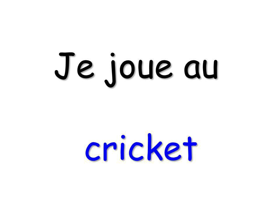 Je joue au cricket