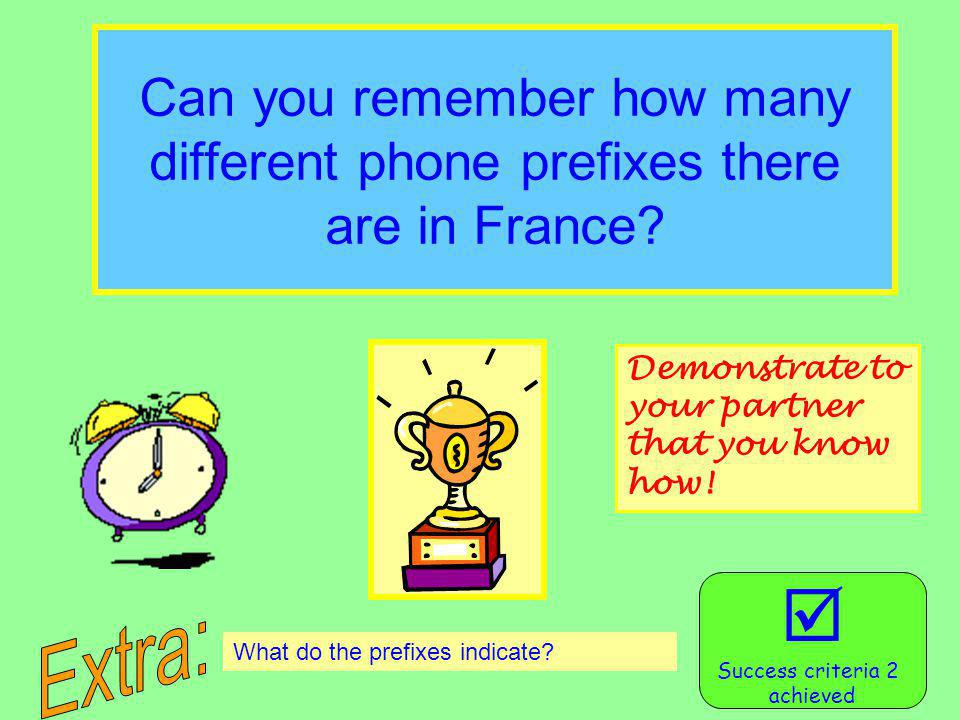 Can you remember how many different phone prefixes there are in France