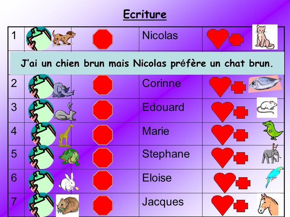J'ai un chien brun mais Nicolas préfère un chat brun.