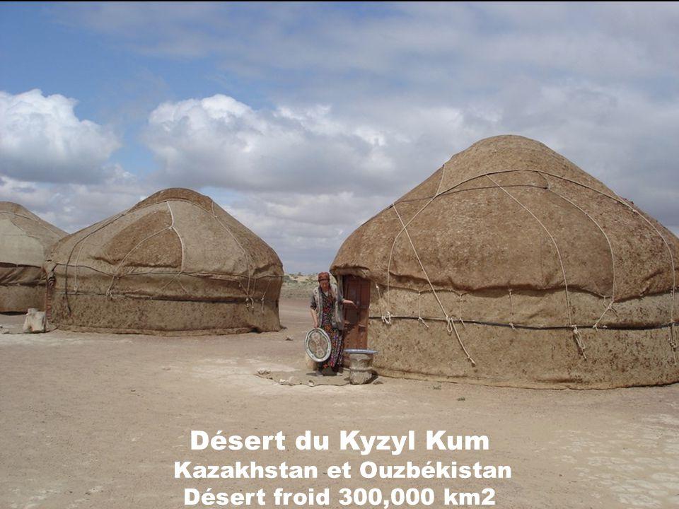 Désert du Kyzyl Kum Kazakhstan et Ouzbékistan Désert froid 300,000 km2
