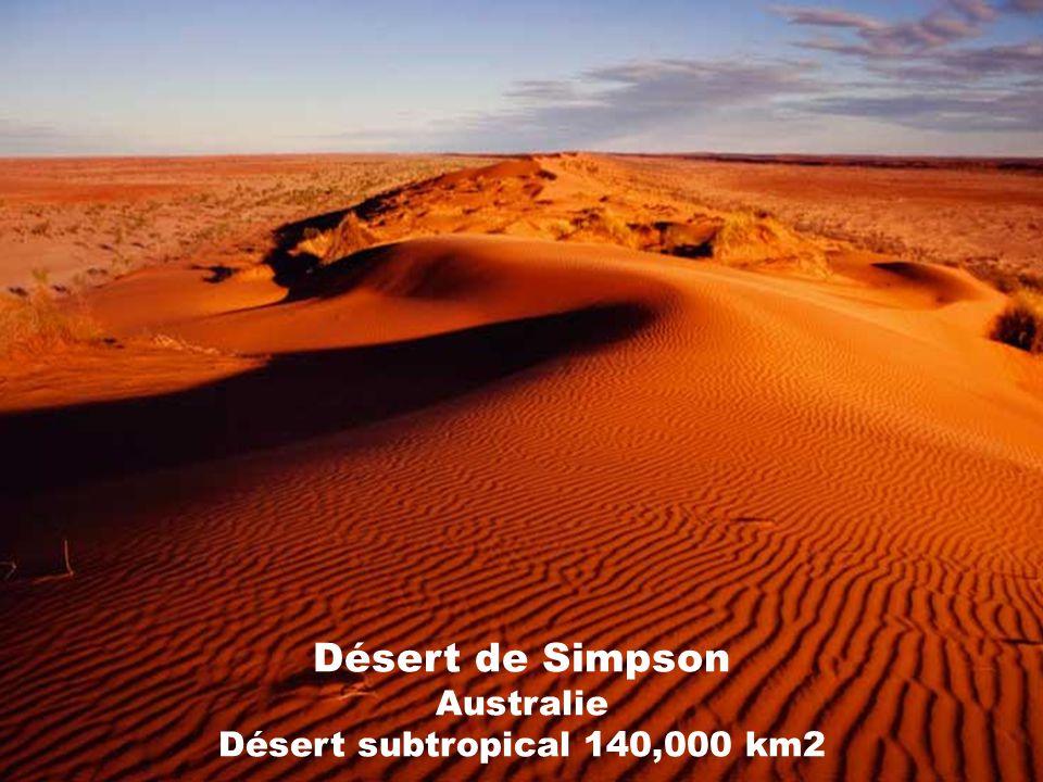 Désert de Simpson Australie Désert subtropical 140,000 km2