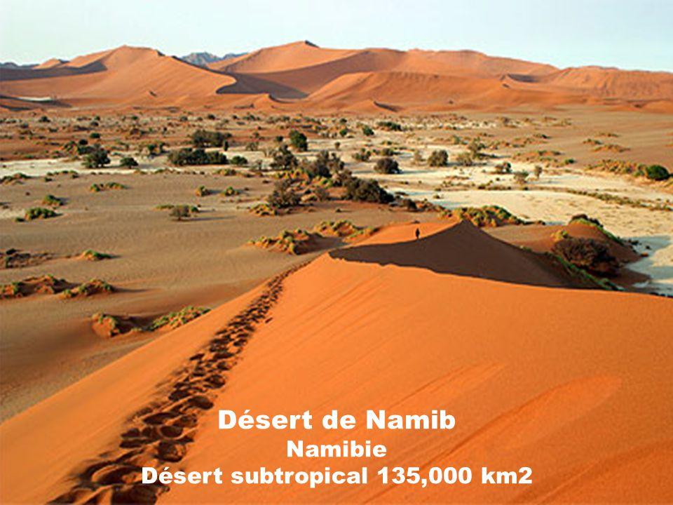 Désert de Namib Namibie Désert subtropical 135,000 km2